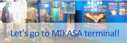 Let' go MIKASA terminal