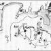 渡辺崋山:「江戸湾海防計画図」